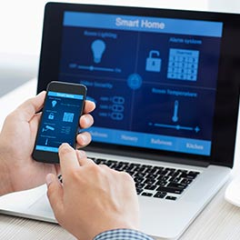 alarme en ligne securitas